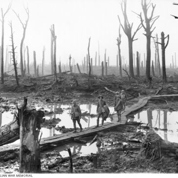 Picture by F. Hurley - source: AWM (E01220). Five Australians, members of a field artillery brigade, passing along a duckboard track over mud and water among gaunt bare tree trunks in the Ypres Salient.